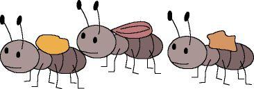 Maestra de Infantil: Las hormigas y los osos hormigueros.Dibujos para colorear, fotos gifs animados, cuentos populares y canciones.