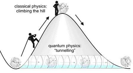 10 choses étranges de l'univers