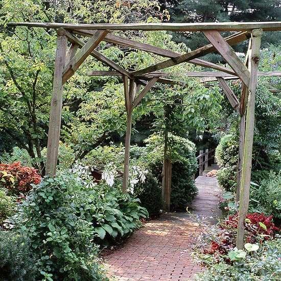Pergola en bois brut por les vignes ou les autres plantes grimpantes