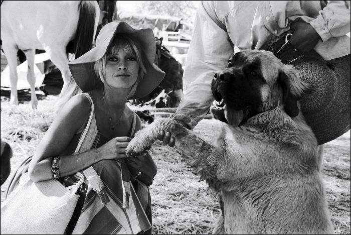 Brigitte Bardot summer style!