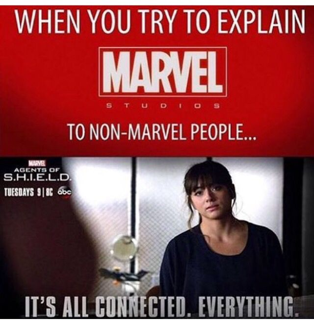 THIS IS SO TRUE. When people ask me why I love Marvel or DC so much I just can't explain why I find it so amazing that every character and different worlds are all connected somehow and that there is no story that doesn't tie in.