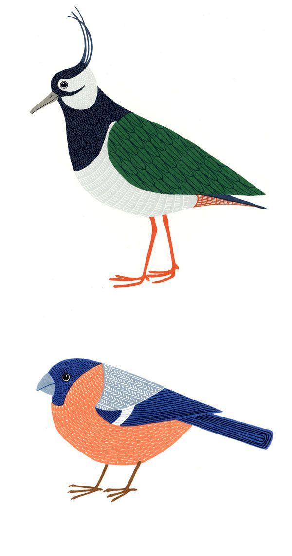 alice's aviary