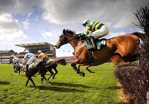 The 169th Annual Crabbies Grand National Horse Racing was great earlier! I'd love to go one day ❤️ #Grand #National #GrandNational #169th #Annual #Race #Racing #Horse #Horses #Animal #Animals #Equine #Equestrian #Sport #Sports #EquestrianSport #Love #LoveIt #Winner #RuleTheWorld #RuleTheWorldHorse #Bets #Money #Gambling #Losers #Winners #LoveToGo #OneDay