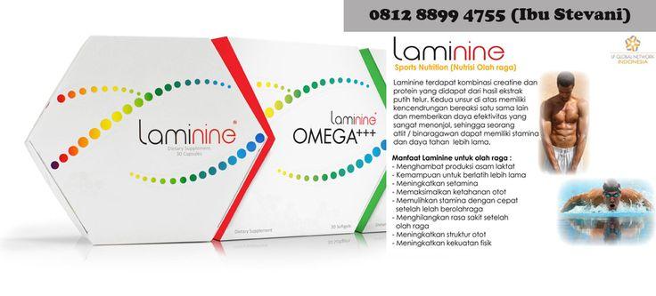 0812-8899-4755 WA (Ibu Stevani)Beli Laminine Dimana,Daftar Harga Laminine Laminine merupakan Sumber protein yang paling penting dan asam amino yang dibutuhkan oleh tubuh kita, bersama dengan mekanisme penyaluran yang tepat untuk mengarahkan Sumber gizi ke tempat tubuh kita yang paling membutuhkan. Laminine dari sumber alami, paduan makanan super yang mengandung vitamin paling dikenal, mineral penting, semua delapan asam amino esensial bersama dengan unsur-unsur gizi lainnya. Laminine adalah…