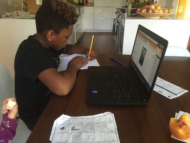 education software essay level 5