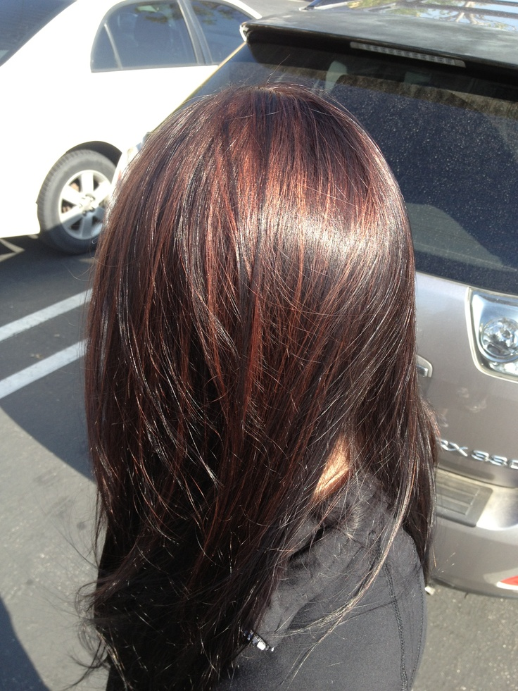 Very dark brown with red highlights hair by barbie de hart