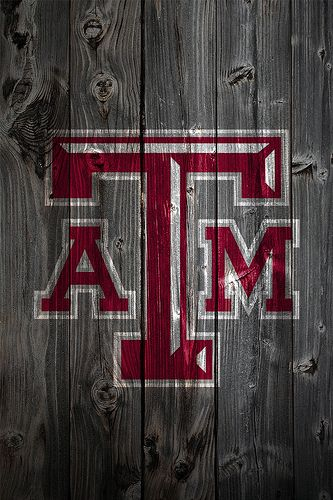 88 best Texas A\M images on Pinterest A m, Tailgating and Aggie ring - tamu resume template