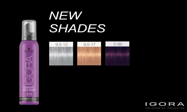 Schwarzkopf Professional IGORA Expert Mousse New Shades ...