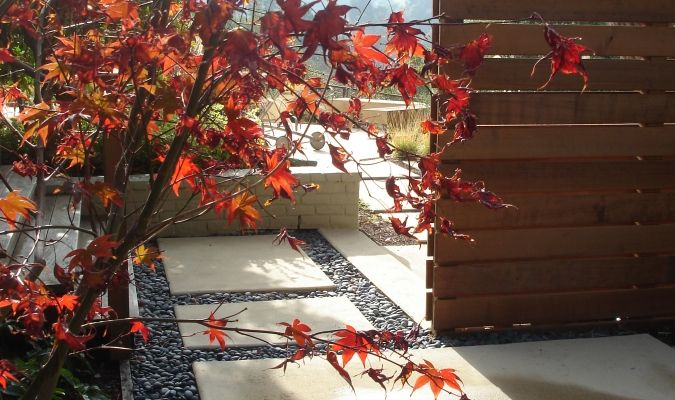 Outer space landscape architecture san francisco bay for Outer space garden design clevedon