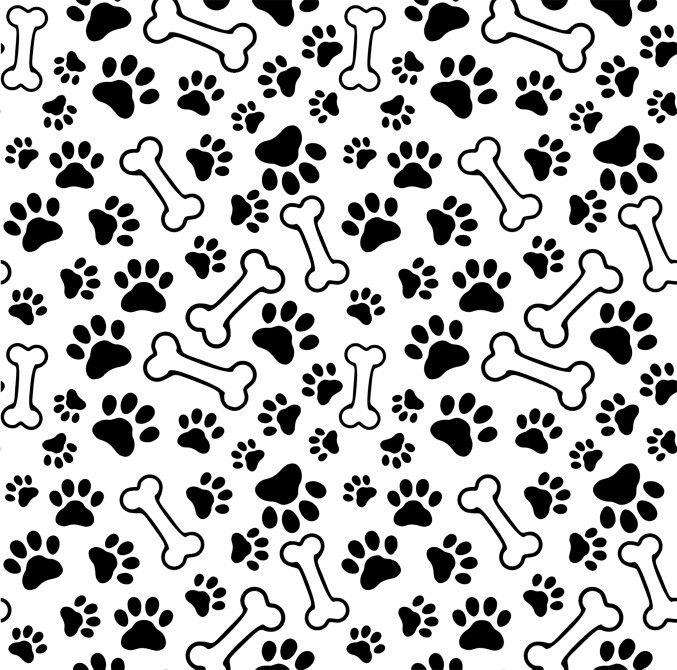 black paw print wallpaper border - photo #40