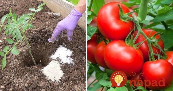 Zvyčajne sa používa celkom inak, záhradkári však zistili, aké úžasné veci dokáže v záhrade!