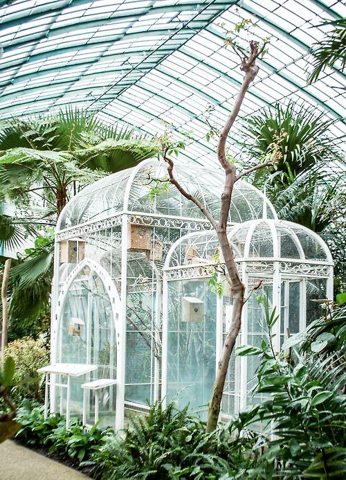 {♥} greenhouse. Vanwege dat mooie glazen huis.