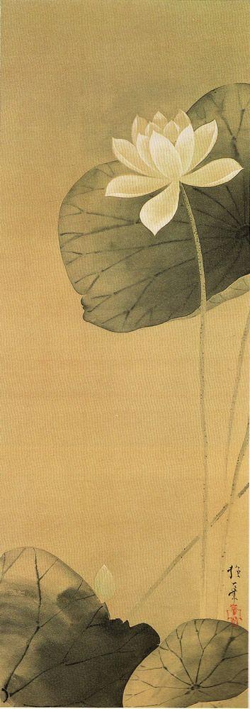 白蓮図,酒井抱一,19th century,Japan
