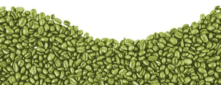 Segundo a Endocrinologista Dra. Tatiana Cunha o café verde possui 2 vezes mais ácido clorogênico, que diminui a absorção de glicose no intestino. Saiba mais
