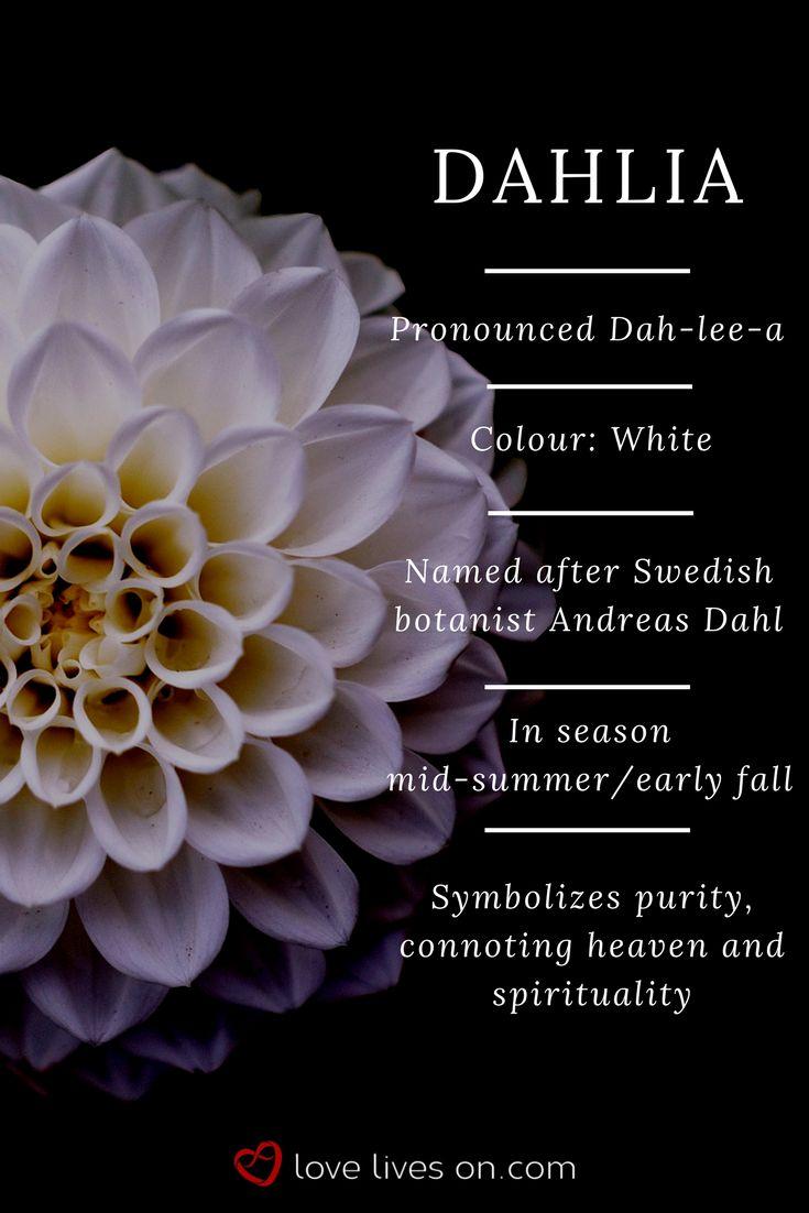 Best 25+ Funeral Flower Arrangements Ideas On Pinterest