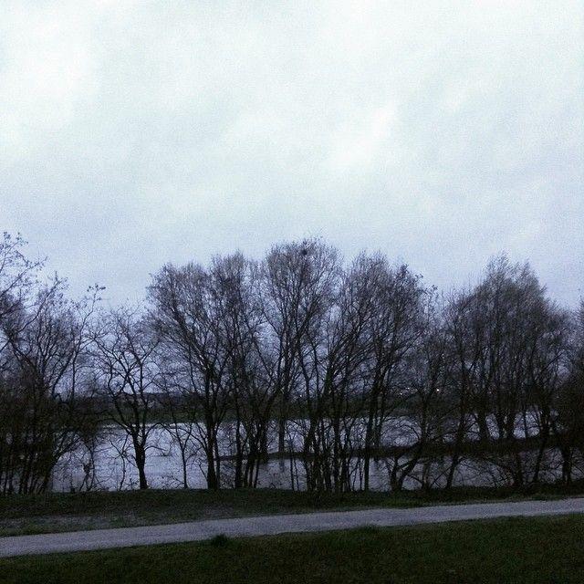 Esondazione 25 marzo...pazza primavera!