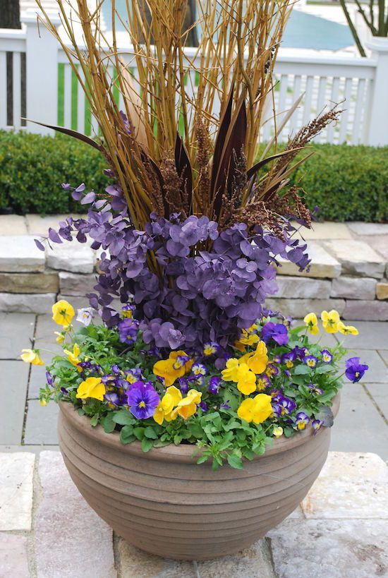 Easter menu and decor inspiration spring pansies and for Garden pods to live in