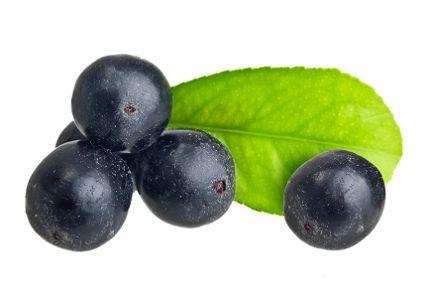 Trend Acai berries translate from Swedish M nga talar om superb ret acai men vad r egentligen de sm m rka b ren bra f r Vi har samlat fakta om de sm men