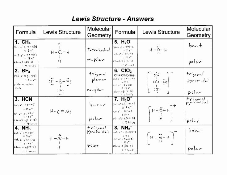 Lewis Structure Practice Worksheet New 9 Best Of Holt Biology Worksheets And Answers In 2020