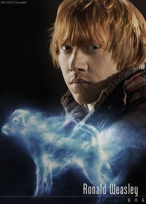 Ron's Patronus: Dog