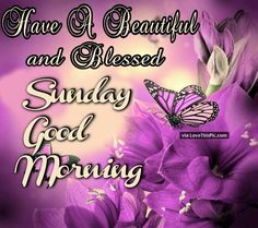 Have A Beautiful And Blessed Sunday Good Morning good morning sunday sunday quotes good morning quotes happy sunday sunday quote happy sunday quotes good morning sunday beautiful sunday quotes sunday quotes for friends and family