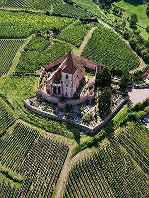 Sur la route des vins en Alsace