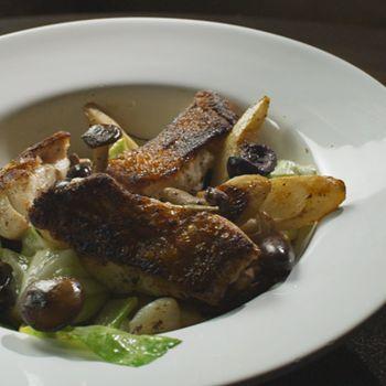 Skindstegt fisk, skorzonerrod og spidskål