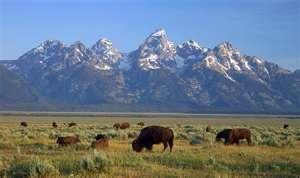 Yellowstone and Grand Tetons National Parks / antelopeflatsroad ...