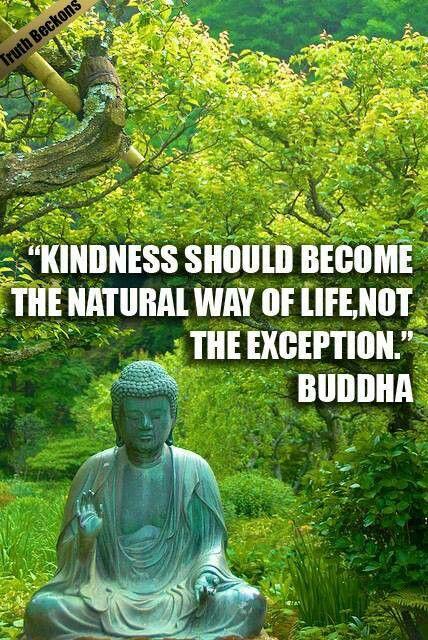 Buddhism •~• Buddha