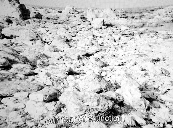 #bergman #persona #subtitle #movie #film Rickard Nilsson