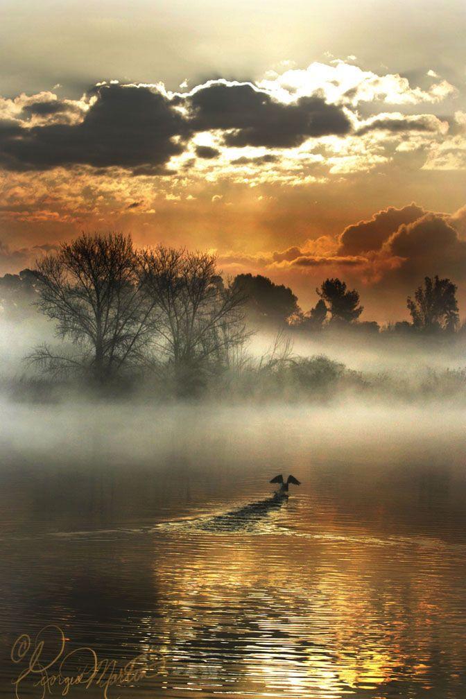 Golden lake & sky