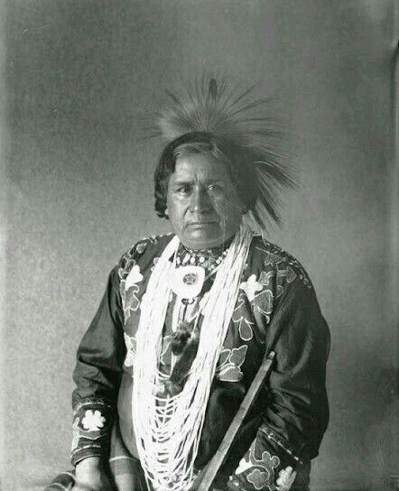 a history of kickapoo indians in the united states Native americans in the united states indian john johnson and the kickapoo indian medicine show at the the kickapoo indian medicine show was a vehicle.