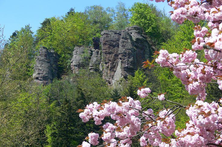 Die Falkensteinfelsen in Bad Herrenalb bieten einen beeindruckenden Panoramablick über Bad Herrenalb und das Albtal. Sie sind ein beliebtes Ziel für Wanderer und Kletterer.