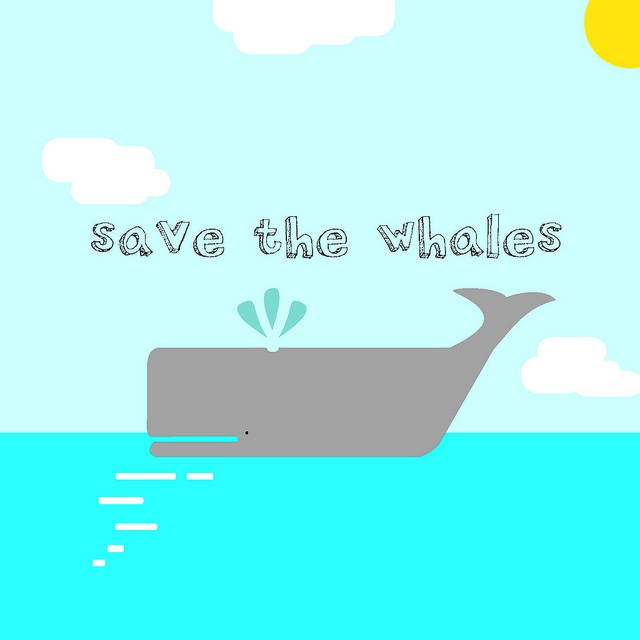 saving the whales The latest tweets from save the whales (@endseaworld) save the whales  email: endseaworld@gmailcom instagram: captivity_kills_apparel.