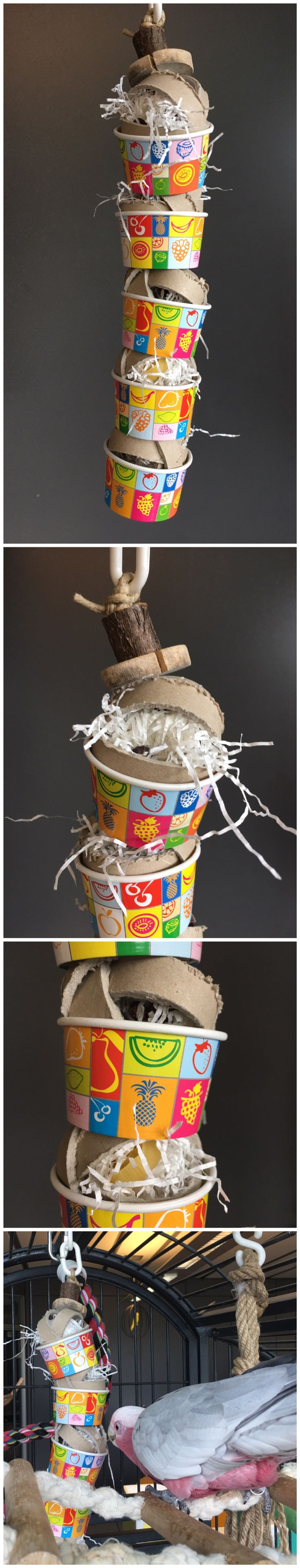 Parrot foraging toy made with cardboard rolls and ice cream cups