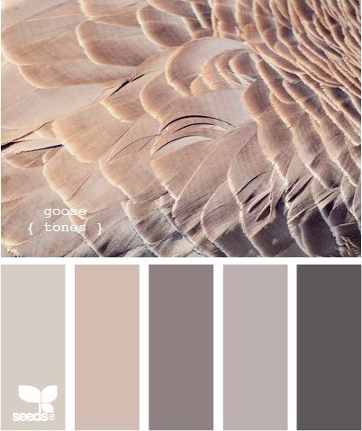 Always a great idea to choose a color pallete straight from nature! This inspiration comes from the colors of a goose. I really like these colors. Master bedroom?.