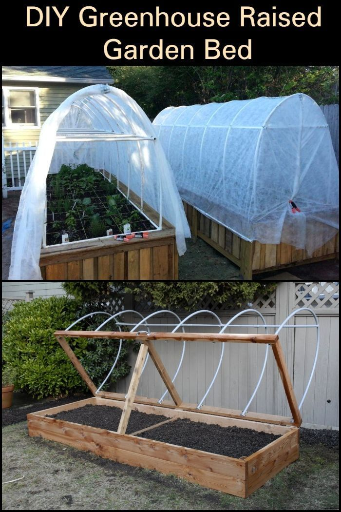Diy Hoop House With Images Raised Garden Beds Garden Beds