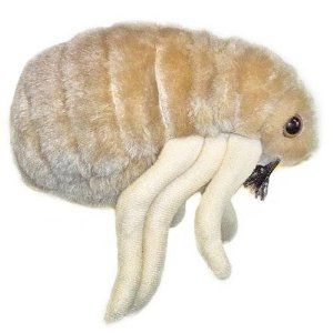 Giant Microbes Plush | Something For Everyone Gift Ideas