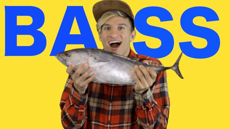 ALL ABOUT THAT BASS - Meghan Trainor PARODY