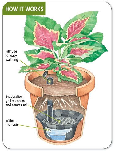Transforms any container into a convenient, self-watering planter  Reduces watering chores and provides a consistent water supply that helps plants thrive.  From Gardener's Supply Company