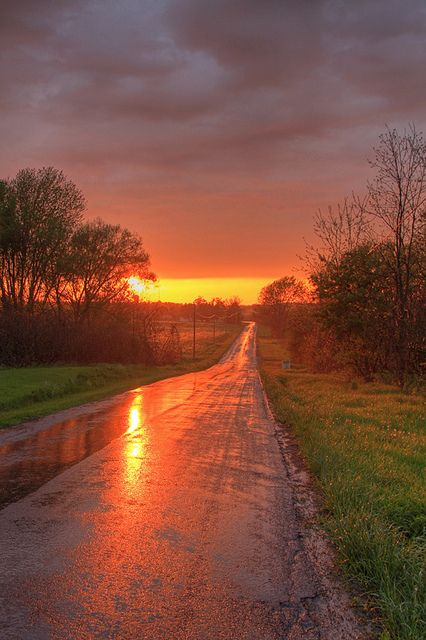 Glowing country road at sunset after a Spring rainstorm