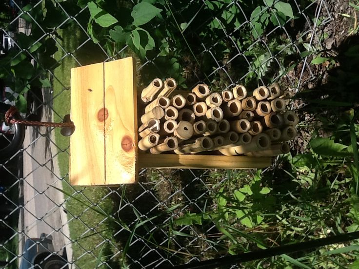 Bug hotel to keep those Lady Bugs in the garden with safe places to stay.
