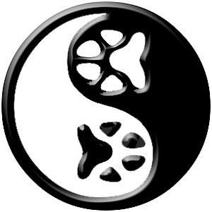 529 best yin yang images on pinterest yin and yang costumes and rh pinterest com Yin Yang Symbol Meaning Vector Wings