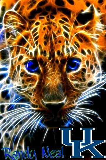 Fractal imaging UK wildcats