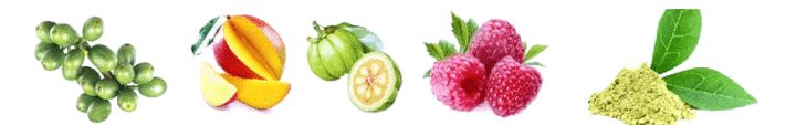 Raspberry Ketone Body Engineering Supplements NZ
