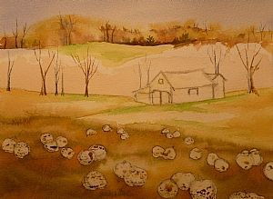 Pumpkin Patch | Step By Step Watercolor