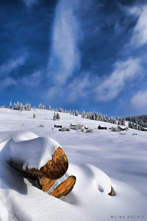 Cool Winter Breeze