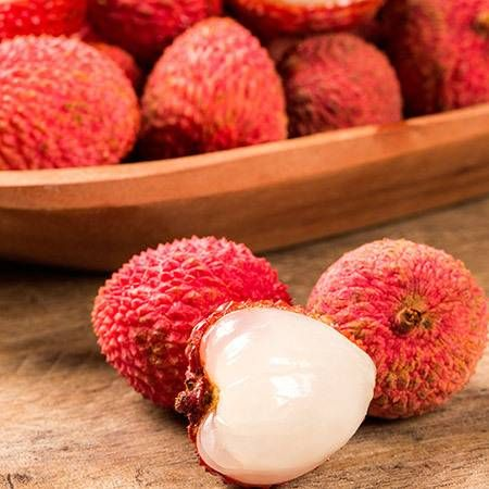 Emperor Lychee Tree for Sale   Fast-Growing-Trees.com