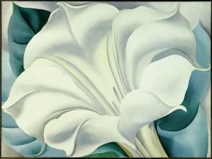 Ah Georgia...you were so far ahead of everyone else.: White Flower, White Trumpet, Georgia O Keeffe, Art, Okeeffe, Painting