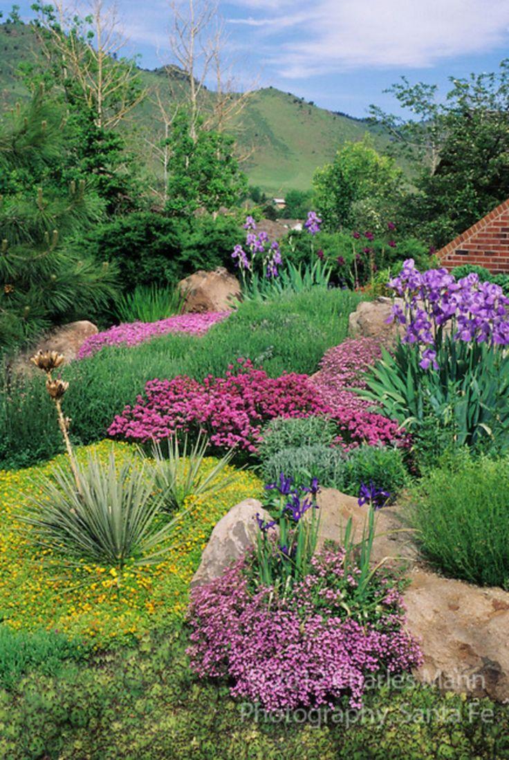 colorado landscaping ideas